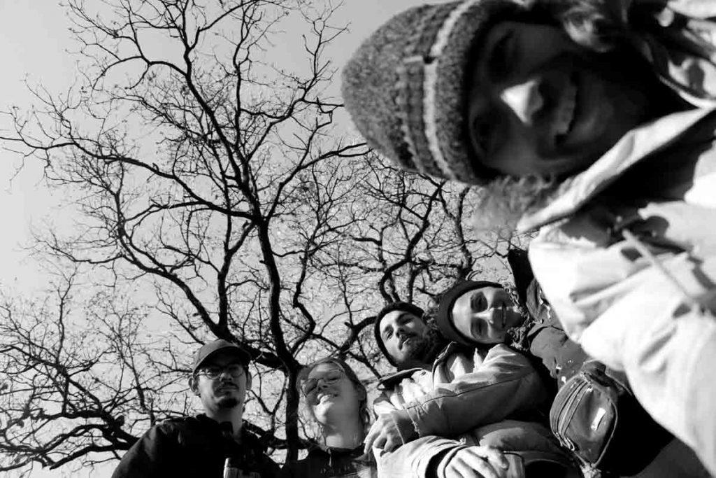 artkruh_projekty_trees